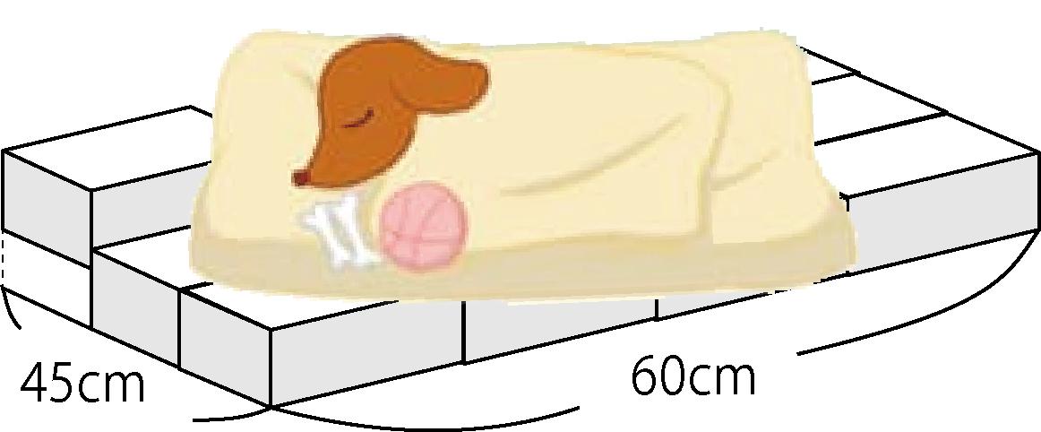 ドライアイスのベッドイメージ